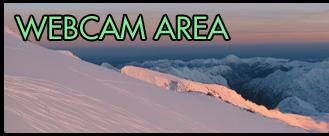 Webcam Area